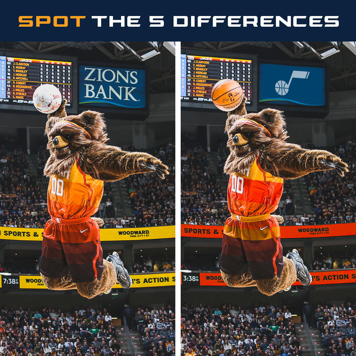 SpotTheDifference_Bear_1200x1200 (1)